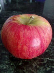 zlatna-parmenka-jabuka