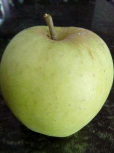 zlatni-delises-jabuka